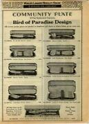 Community Plate Bird of Paradise