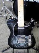 Fender Case