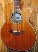 Takamine Acoustic Guitar Case