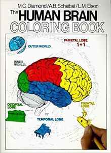 NEW The Human Brain Coloring book by Marian C. Diamond