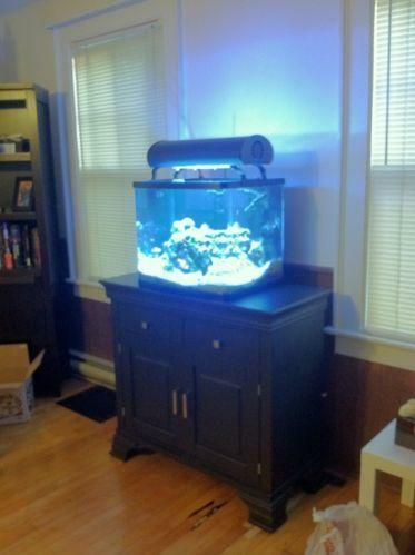 Used fish tanks saltwater ebay for Fish tanks for sale ebay