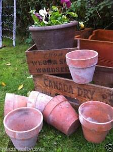 Used Garden Plant Pots