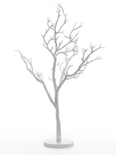 Wedding Manzanita Trees Ebay