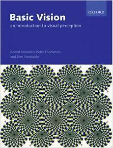 Basic Vision London Ontario image 1