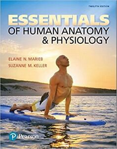 Selling: Essentials of Human Anatomy and Physiology 12th edition