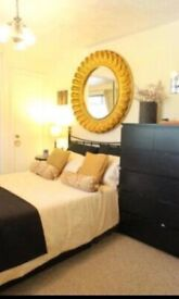 Extra large chic burnished gold mirror