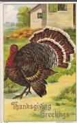 Antique Thanksgiving Postcards