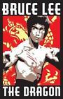 Bruce Lee Movie Poster