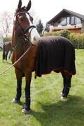 Horseware Abschwitzdecke
