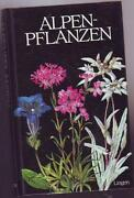 Lingen Verlag