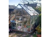 Greenhouse 6x6 Aluminium with staging and auto opening window vent.