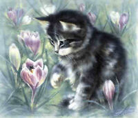 """Kitten - collectible limited edition giclee print 12x16"""""""