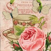 Shabby Chic Rose Picture