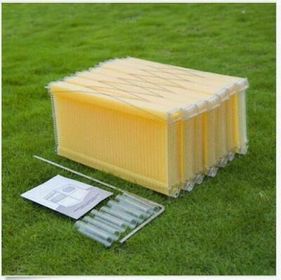 7pcs Honey Bee Hive Frames Beekeeping Kit Bee Hive Auto Harvest Honey M