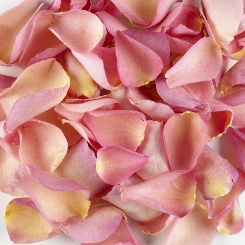 1 Pint of Pink! Freeze Dried Rose Petal Confetti