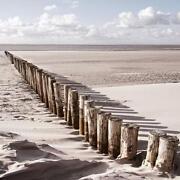 Glasbild Sand