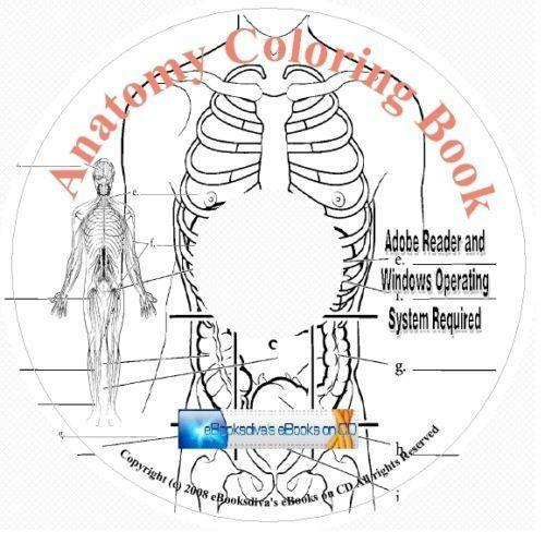 Anatomy Coloring Book Kaplan EBay