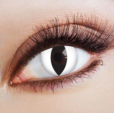 aricona weiße farbige Kontaktlinsen Katzenaugen Farblinsen deckend Halloween