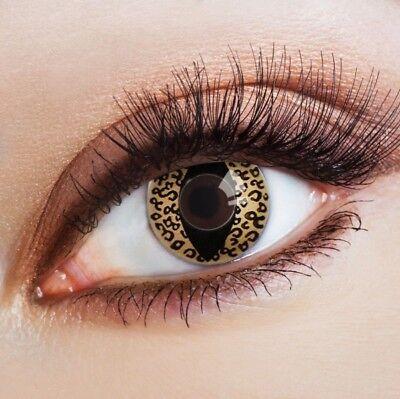 raune Kontaktlinsen Katzenaugen sexy Halloween Augen Make-up (Katze Halloween Make-up Augen)