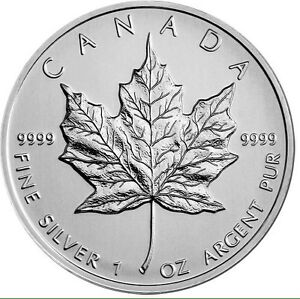 Pure Silver Maple Leaf (Preserve Your Wealth)