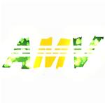 Amv-online