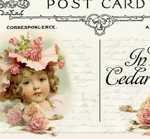 Shabby-Vtg-Chic-Floral-Pink-Roses-Boutique-Victorian-Ebay-Auction-Template-P-E-P