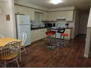 Sublet to Student Laurier U or UoWaterloo Kitchener / Waterloo Kitchener Area image 3