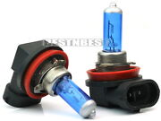 H11 Headlight Bulbs