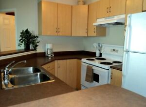 Great Two Bedroom Furnished Condo - All Inclusive!