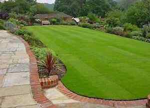 LAWNMOWING , EDGES & WHIPPER SNIP FR $30. GARDENING YARD TIDY UPS Malaga Swan Area Preview
