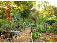 Permaculture Gardening Services Exeter