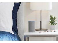 Alexa/Google Home setup service.