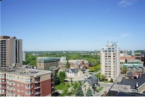 Downtown Highrise Condo available for Mar 1st! $1150