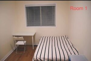 Bright room for rent from May