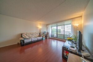 Burnaby Central Park Two-Bedroom  Apartment with perfect price
