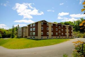 4 Bedroom Near UNB: All Included rent! Free month!