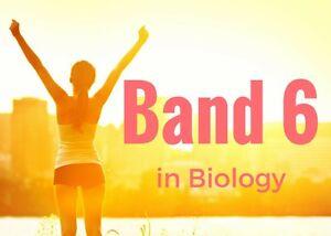 Preliminary/HSC biology tutoring Campbelltown Campbelltown Area Preview