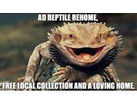 Reptile Rehome/Rescue Service