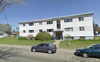 West End, Meadowlark/West Edmonton Mall Area. 1 BR APT SUITE
