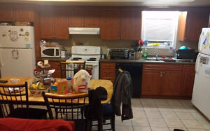 4 month Winter sublet