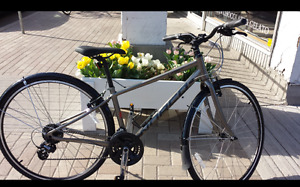 Women's Norco Grey Bike - Stolen- Reward if found