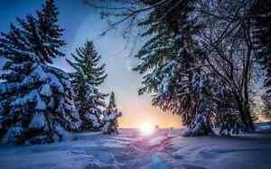 """""""Snow is Beautiful but Not on Your Driveway... WE Can Help!"""" Edmonton Edmonton Area image 5"""