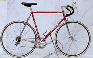 Vintage Daccordi Italian Road Bike 58cm
