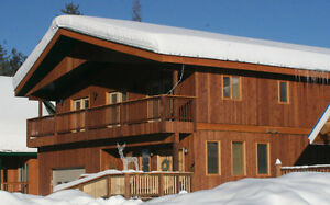 AWESOME INVESTMENT CUSTOM BUILT 3 LEVEL HOME IN KIMBERLEY