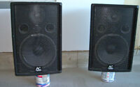 A pair of 15 inch PA speakers