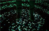 GLOW IN THE DARK CONCRETE