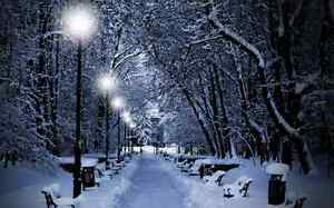 """""""Snow is Beautiful but Not on Your Driveway... WE Can Help!"""" Edmonton Edmonton Area image 6"""