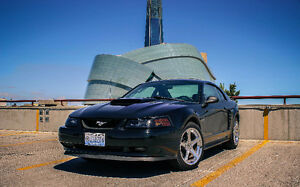 2001 Ford Mustang Premium GT Coupe (2 door)