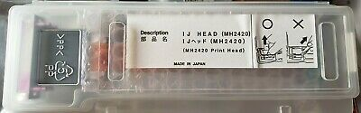 Anajet Ricoh Print Head Printhead Clogged R6000 Mpower Mp5 Mp10 Dtg Printer