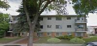 Montrose Apartments - 2 Months Rent Free -  Apartment for Rent